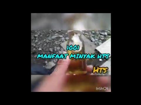 1001-manfaat-minyak-hts