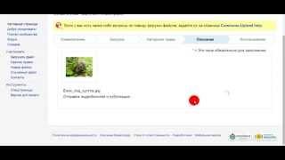 Урок 3: Как загрузить фото в Википедию (свободное)