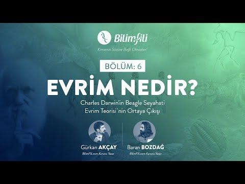 YouTube BilimFili Thumbnail