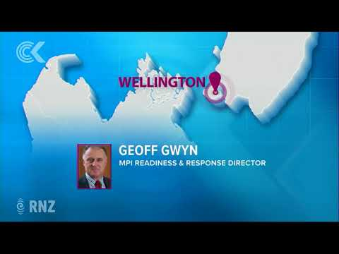 First NZ farm with Mycoplasma bovis uses vet 1600km away: RNZ Checkpoint
