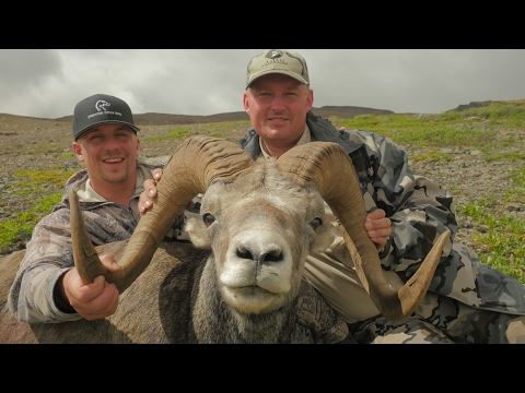 Tips & Tricks For Sheep Hunting