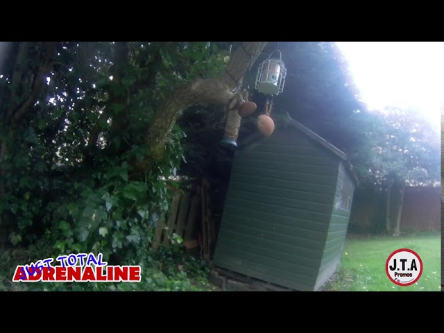 Bird Cam on Feeders in Hawick, Scottish Borders  GoXtreme Vision 4K Ultra HD Action Camera Footage