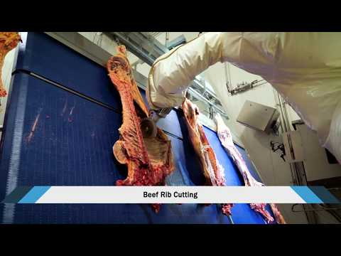 Red Meat Processing Technologies - SCOTT