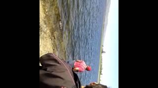 Pesca de carpa en dique Los Molinos. Carpa 3kg