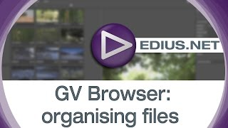 EDIUS.NET Podcast - GV Browser organising files