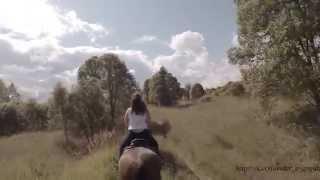Конный тур. Россия, Тверь / Horse tour. Russia. Tver Region