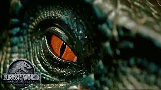 How Will The Indoraptor Escape? | JWFK Theory/Speculation | Hybrid
