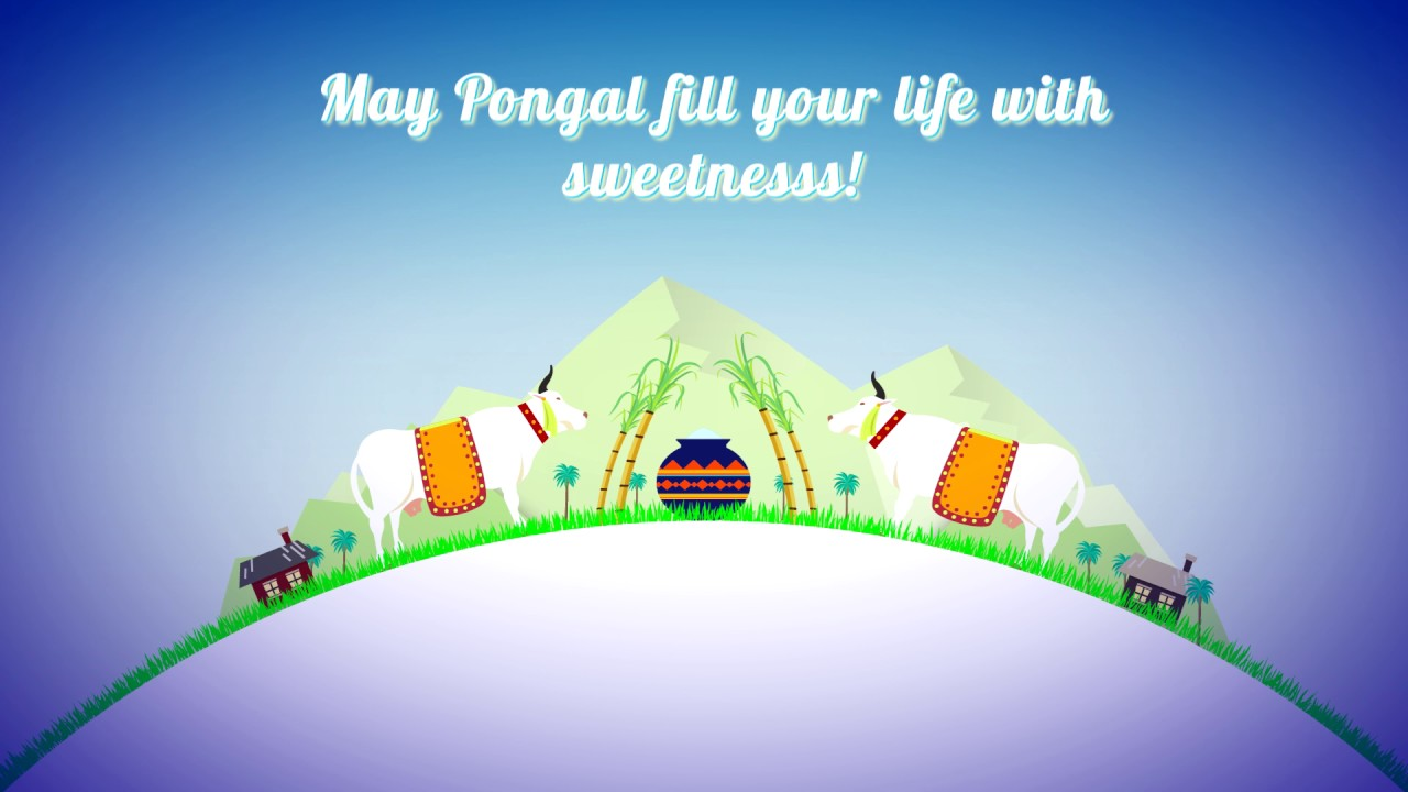 2017 happy pongal greetings video indian traditional festival with 2017 happy pongal greetings video indian traditional festival with tamil fonts m4hsunfo