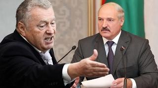 Жириновский - 'Лукашенко. ласковый теленок двух маток сосет' 04.02.2017