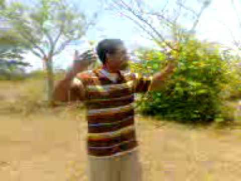 video evangelico 3gp