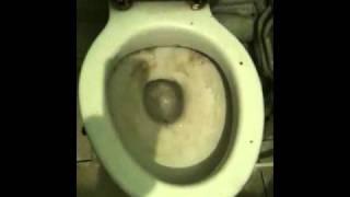 Déboucher un wc avec paris plombier pas cher 01 83 64 78 25(, 2011-03-16T21:20:37.000Z)