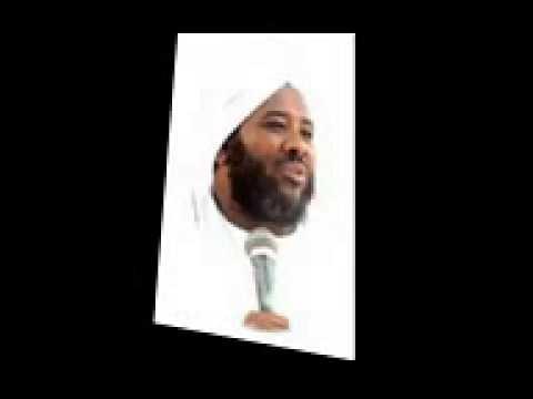 الشيخ محمد سيد حاج الرقص والمديح والخرافات الصوفية thumbnail