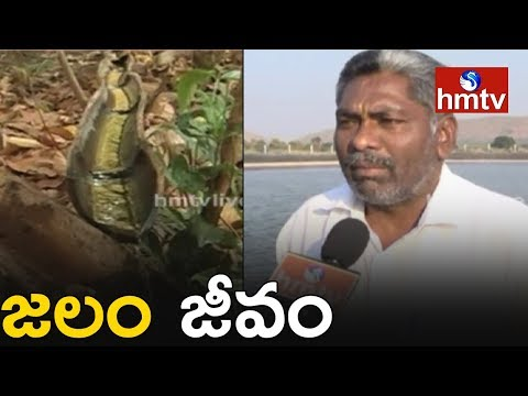 Tribals Water Conservation Method | Farm Pond  | Jalam Jeevam | Telugu News | hmtv News