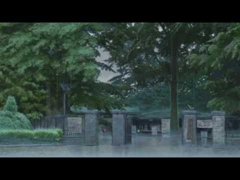 jinsang - thoughts