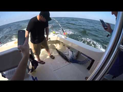 Fishing On The AmberJack In Biloxi Ms
