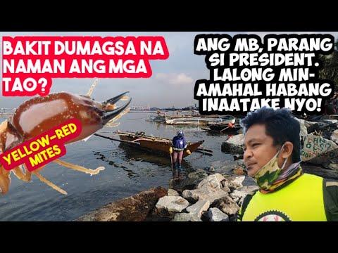 Download DUMAGSA NA NAMAN  ANG MGA TAO sa Manila Bay (This is UNEXPECTED)