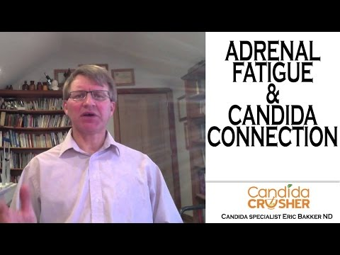 Adrenal Fatigue and Candida