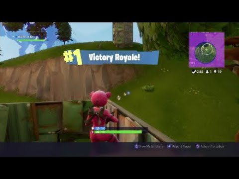 FORTNITE- PINK TEDDY BEAR 19 KILL SOLO WIN!