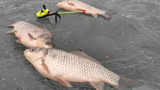 Не МНОГО КАРАСЯ - НО ЗАТО КАКИЕ!! Зимняя рыбалка на поплавок, кивок, мормышку