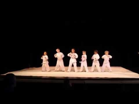 Hikari Ryuza Center 2016 Annual Martial Arts and Dance Show
