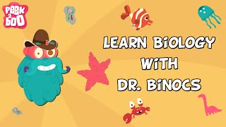 Learn Biology With Dr. Binocs |  Compilation