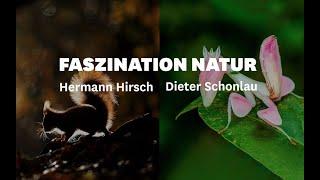 MUNDOLOGIA: Faszination Natur - Naturreich (Trailer)