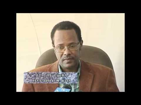 Ethiopia, jobs creation in Addis Abeba