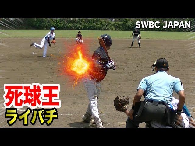 ???????????????…???SWBC JAPAN???2??