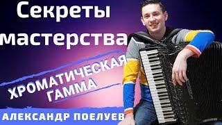 Как быстро научиться играть на аккордеоне Хроматическую гамму? СЕКРЕТЫ МАСТЕРСТВА #1