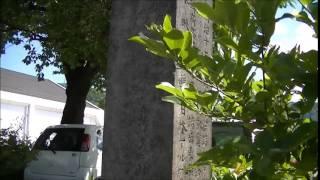 桔梗ヶ原古戦場の碑 武田信玄 対 小笠原 塩尻市