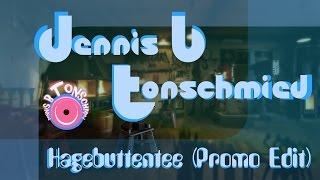 Gambar cover Dennis B Tonschmied - Hagebuttentee (Minimal Promo Edit)