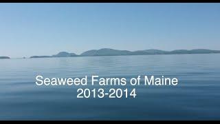 Seaweed Farms of Maine 2013-2014