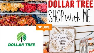 DOLLAR TREE SHOP WITH ME | FALL & HALLOWEEN ITEMS