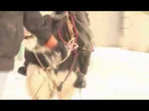 """Нурбек Болотов, документальный фильм """"Транспорт для Санта Клауса"""", ролик  из фильма"""