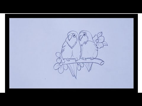 Pencil Drawing Of A Love Birds Simple Love Birds Drawing Youtube