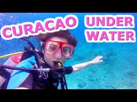 SCUBA DIVING IN CURACAO + NICK CANNON! TRAVEL VLOG 320 CURACAO | ENTERPRISEME TV