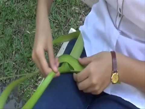 Phương pháp làm cào cào từ lá dừa (Nhóm 2, lớp 8/7, 13-14)