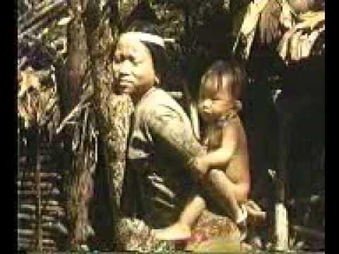 KEHEBATAN Suku DAYAK KALIMANTAN Tempo Dulu