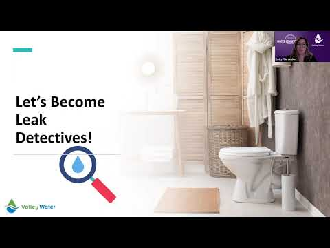 Become a Leak Detective at Home