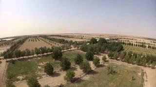 Dji phantom short video - Al abdali Farms - Kuwait