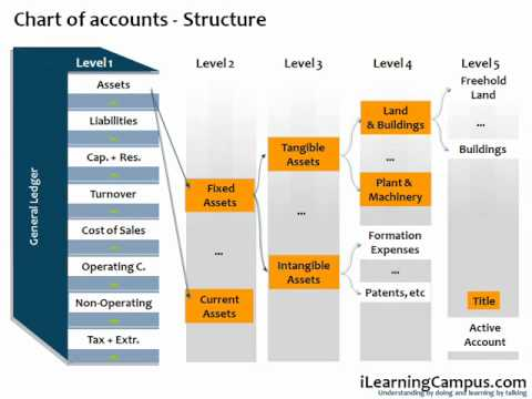 SAP Financial Accounting (FI) Chart of Accounts - YouTube