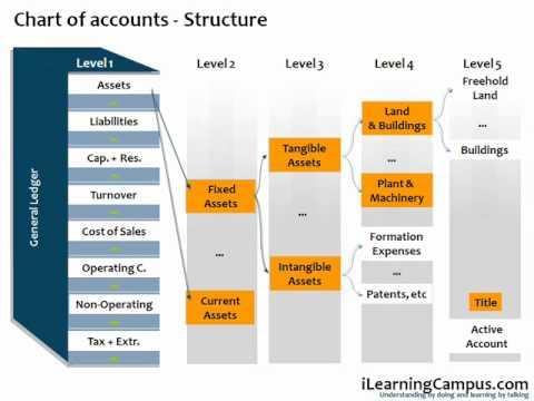 SAP Financial Accounting (FI) Chart of Accounts - YouTube