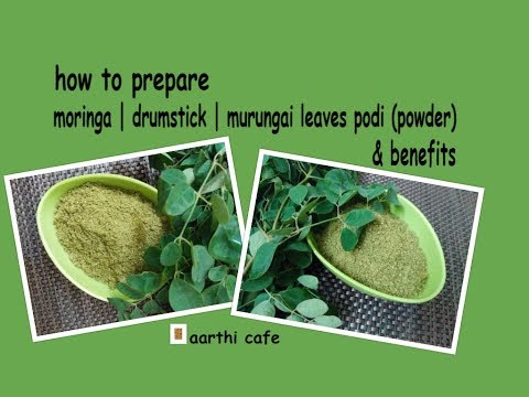How To Prepare Moringa   Drumstick   Murungai Leaves  Podi & Benefits    Recipe No - 204