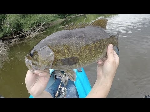 Kayak Fishing Mississippi River For BIG Smallmouth Bass 2017