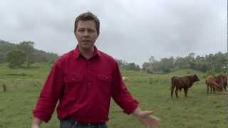 Meet our Farmer - Aussie Farmers Direct Meat Supplier