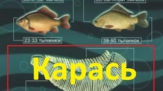 Диалоги о рыбалке  Ужение карася(Пожалуй, ни одна рыба не пользуется у удильщиков такой популярностью, как карась. Среди поклонников его..., 2012-09-17T17:36:52.000Z)