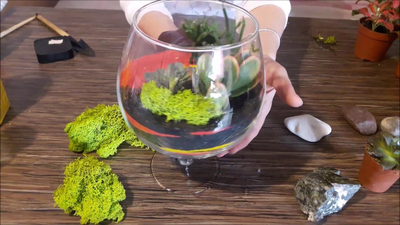 Флорариум для растений своими руками фото 719