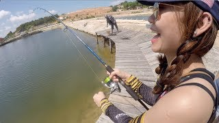 Video Fishing for GROUPERS in a POND! [Part 2] BATAM BARELANG FISHING download MP3, 3GP, MP4, WEBM, AVI, FLV Agustus 2018