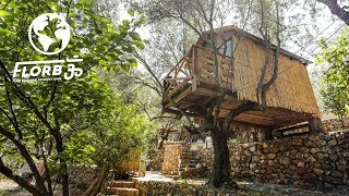 Tiny Treehouse Village made from Free Materials in Greece