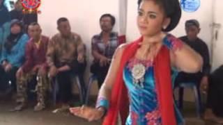 Download Mp3 Celeng Mogok Ii Bela Ii Panca Krida Budaya Sanggar Oemah Bejo Live Beji